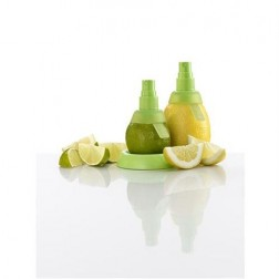 Citrus Sprayer Set/2, groen